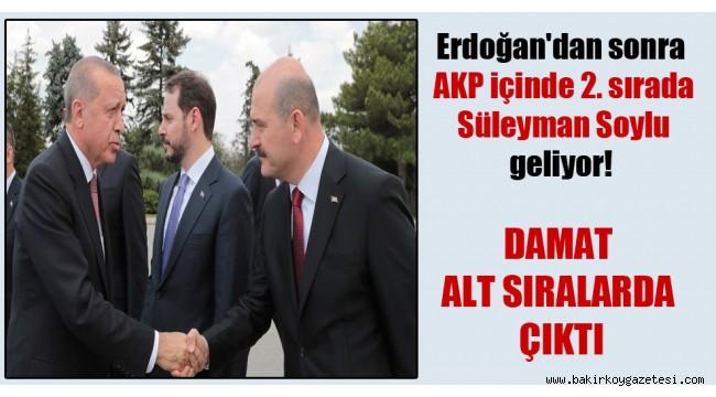 Erdoğan'dan sonra AKP içinde 2. sırada Süleyman Soylu geliyor! Damat alt sıralarda çıktı